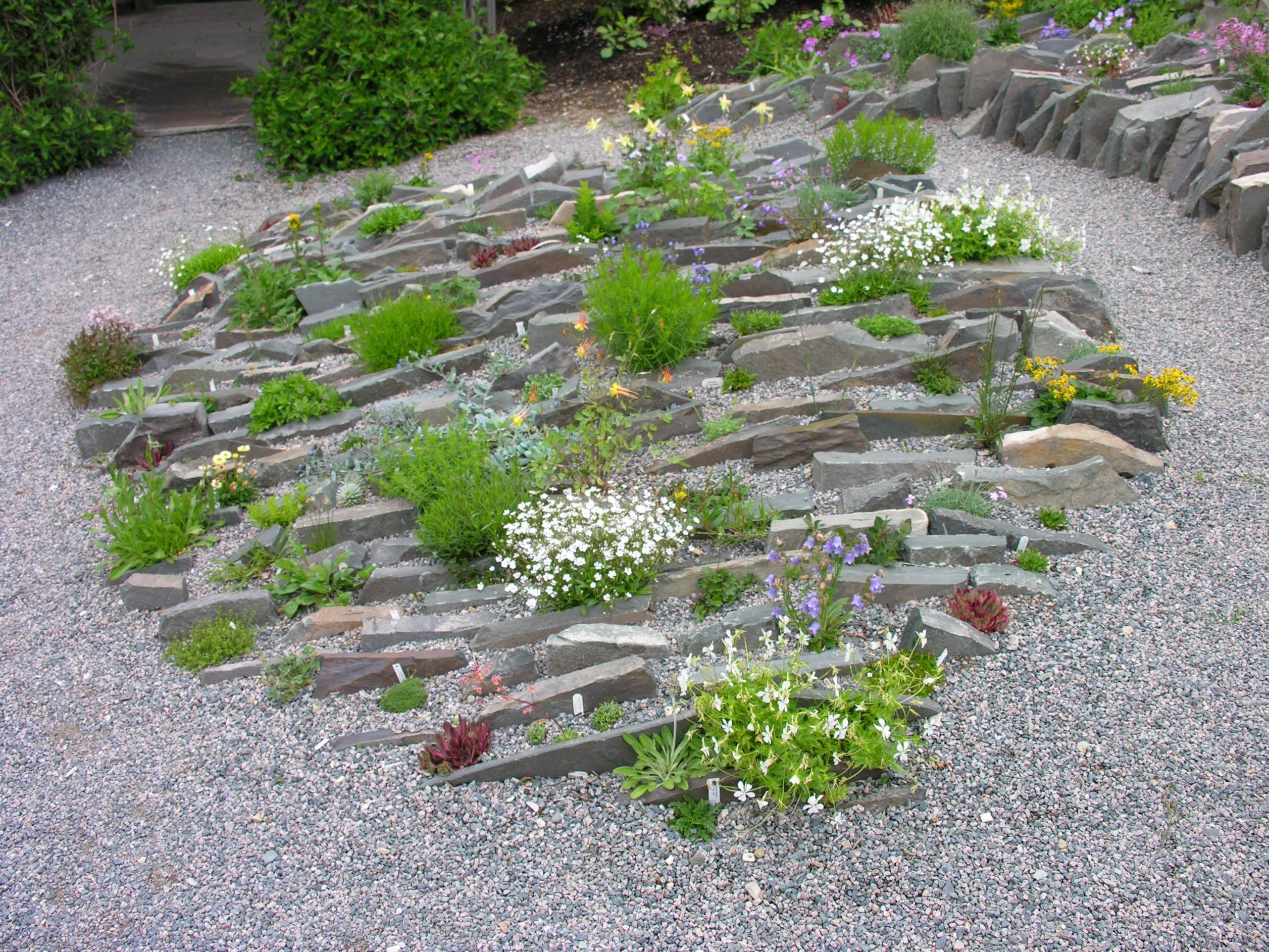 alpine crevice garden / on ttl design | alpine & rock gardens