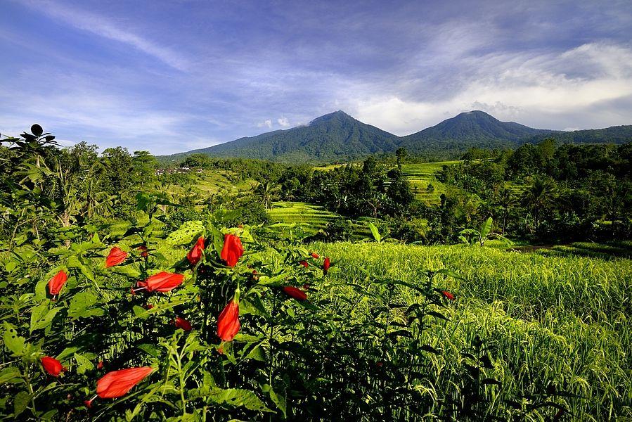 Patrick Loertscher Photography | Blog | Les voyages en Asie de tourasia