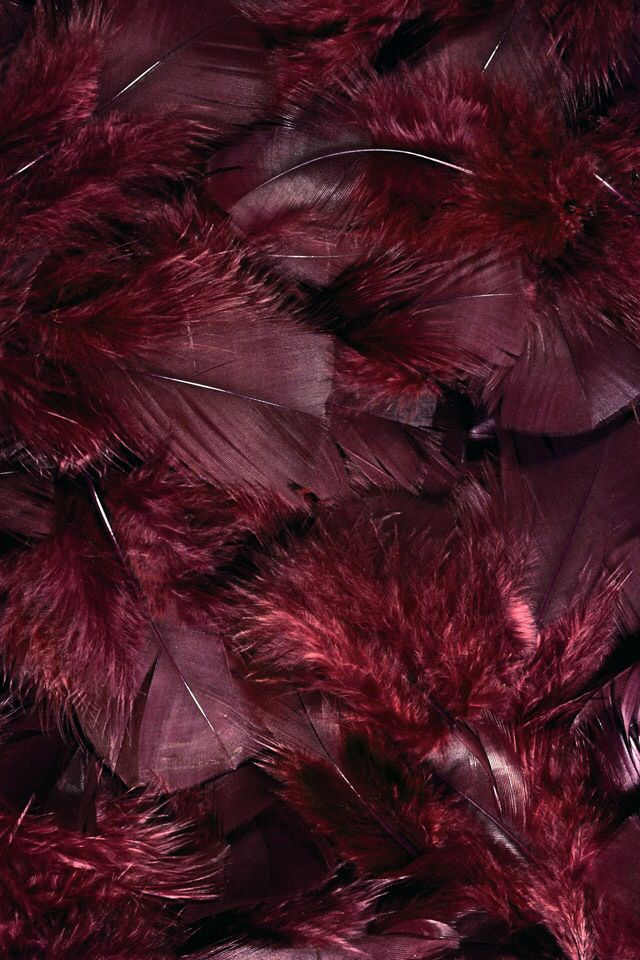 Burgundy feathers it 39 s all in the details natural for Burgundy wallpaper