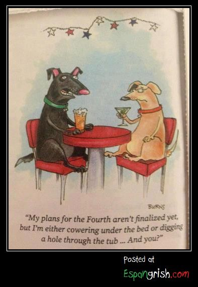Fear Of The Fourth Dogs And Fireworks Dog Blog Cartoon Dog