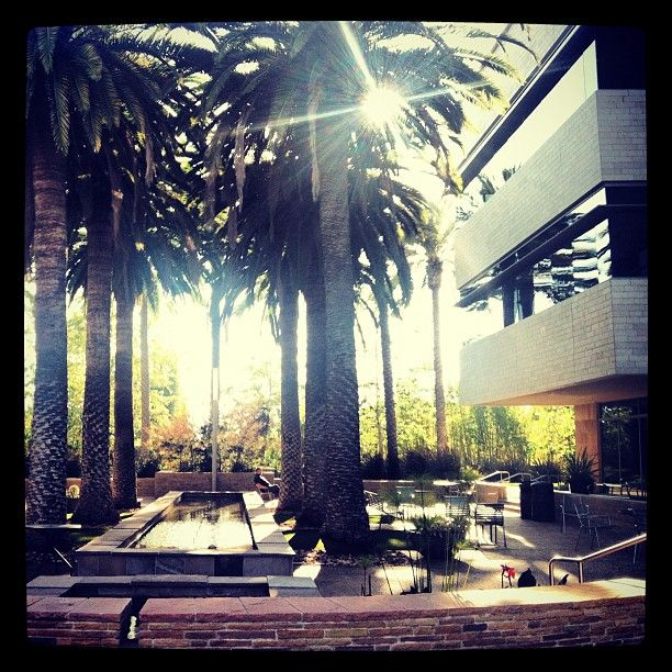 The Scenery At Intuit S San Diego Office Never Gets Old San Diego Jobs Scenery San Diego