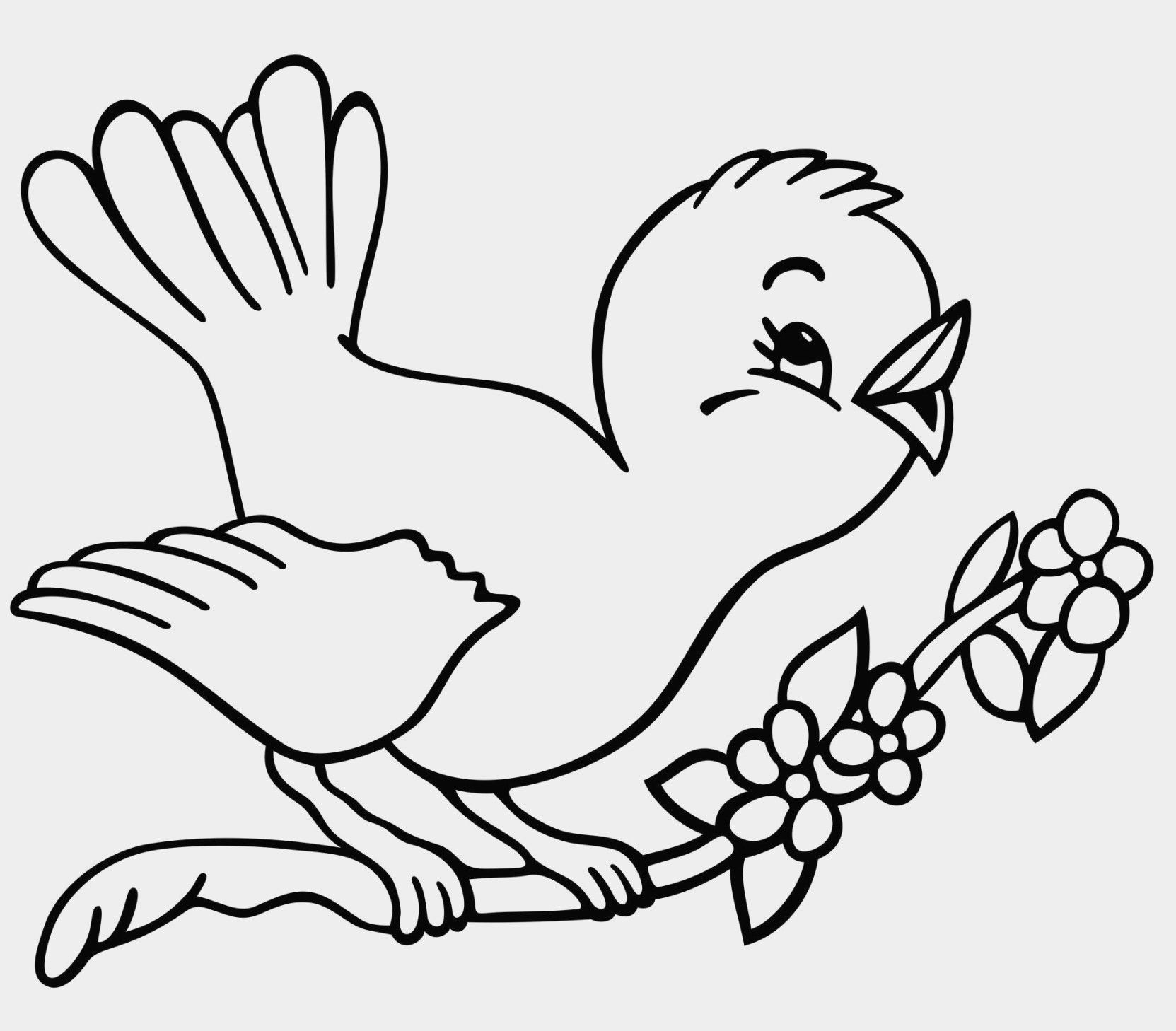 Bird Coloring Pages Free Refrence Angry Birds Printable Coloring