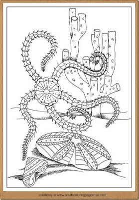 free printable nature coloring pages for adults  Nature Coloring