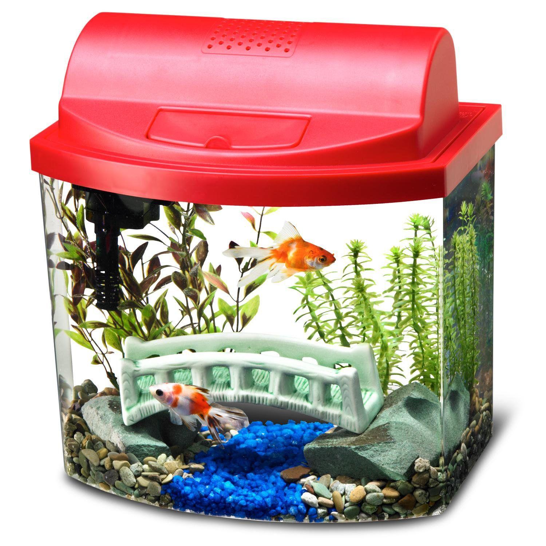 Aqueon Mini Bow Desktop Aquarium Kit In Red 5 Gal Petco Store Desktop Aquarium Aquarium Kit Aquarium