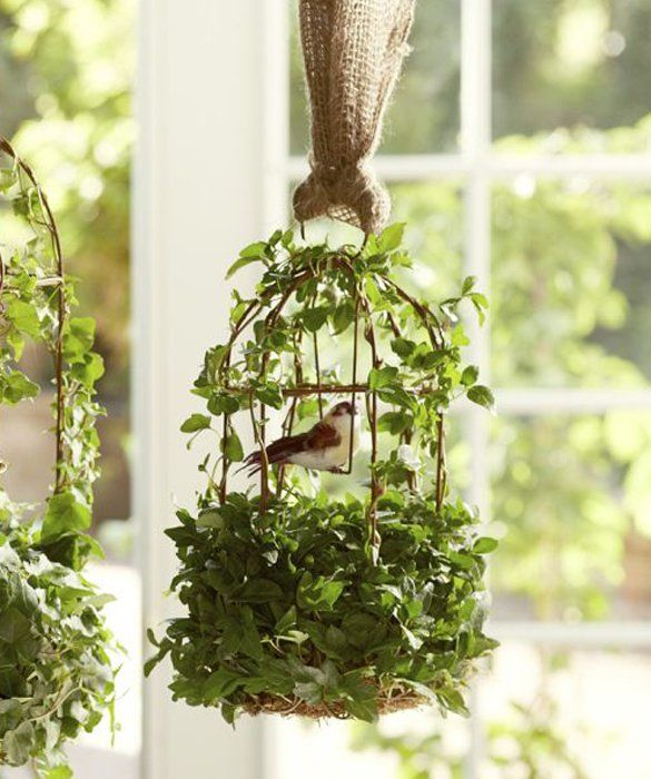 Ivy covered birdcage decorating with plants for Articulos decoracion jardin