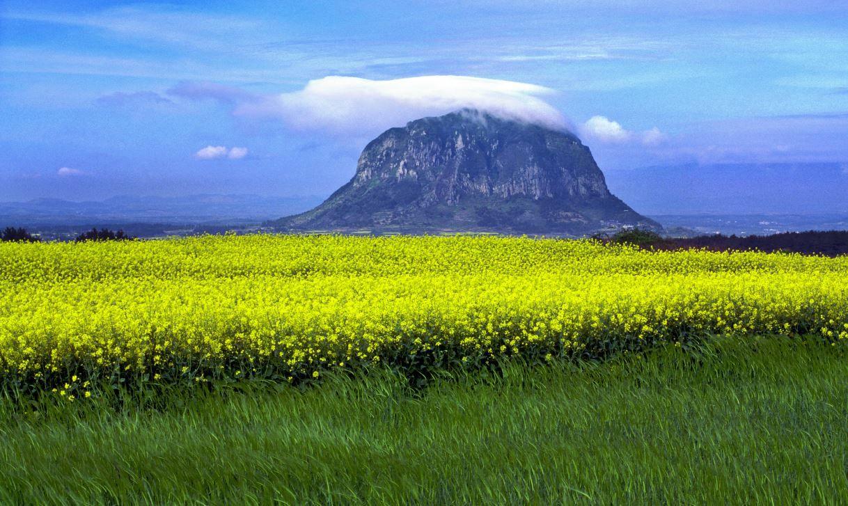 Hallasan National Park, Jeju Island, South Korea