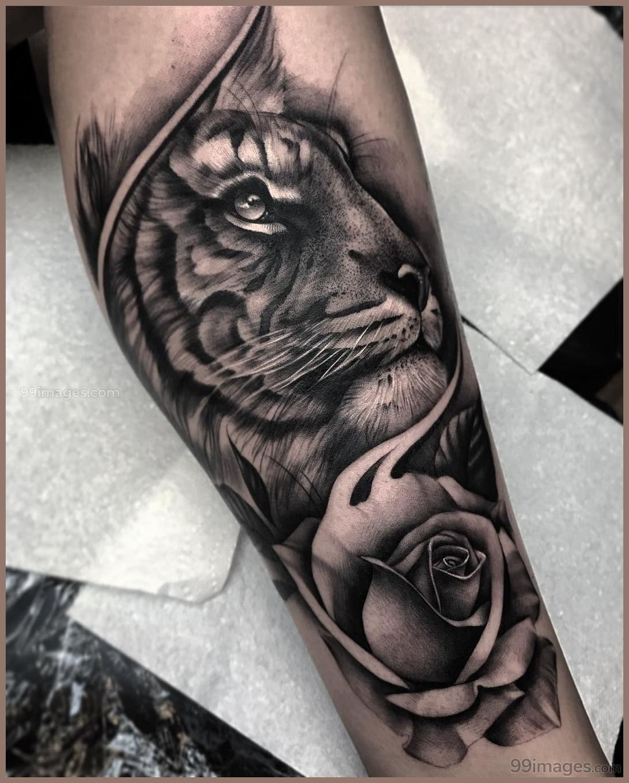 Creative Tiger Tattoos Hd Images 12301 Tigertattoos Tattoos Tiger Tattoo Sleeve Tiger Tattoo Sleeve Tattoos
