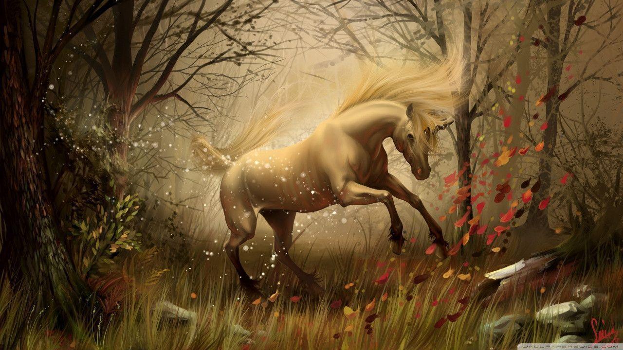 Unicorn Desktop Backgrounds Wallpaper Panda 1280x720px Wallpaper Unicorn Wallpaper Horse Wallpaper Unicorn Fantasy