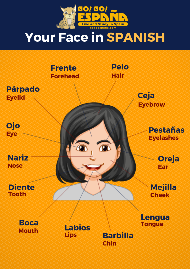 Your face in Spanish