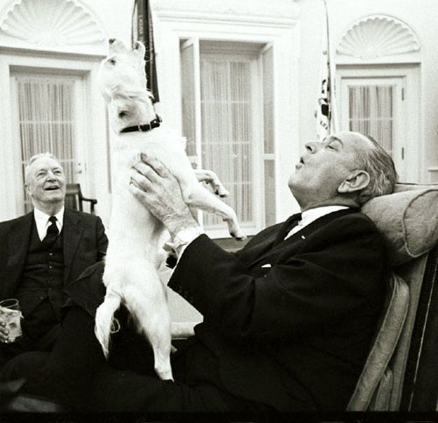 Lyndon Johnson Picture Holding Dog By Ears