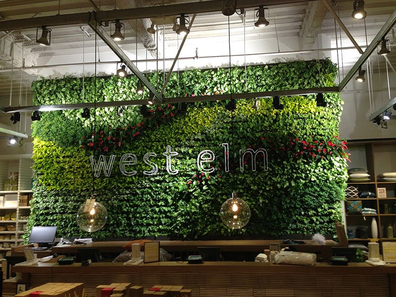 Beautiful Example Of A Retailer Utilizing A Living Wall And Branding