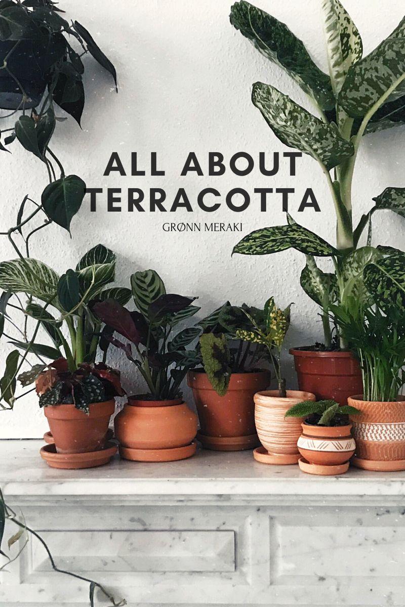 #terracotta #terracottapots #handmade #colombia #boho #plants #blog #blogger #meraki #green #lovelygreens #slowliving #positive #positivemindset #manifestation #lawofattraction