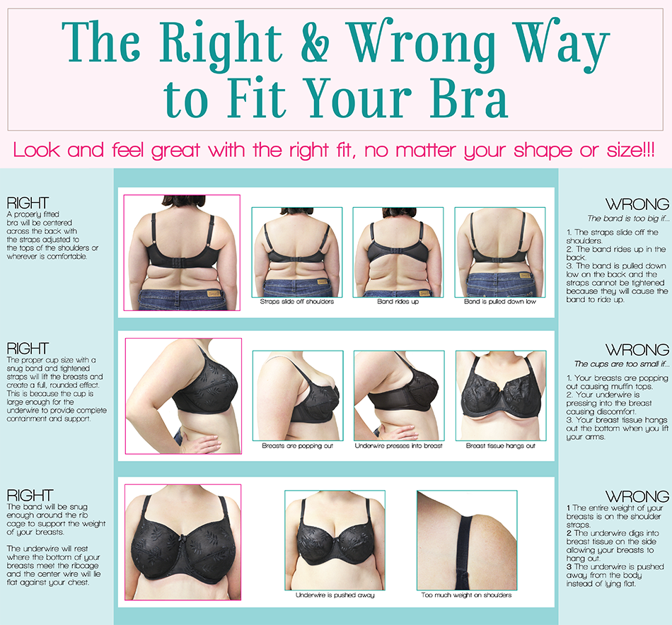 This Is How a Bra Should Fit
