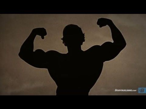 Arnold schwarzeneggers blueprint to mass exercises pinterest arnold schwarzeneggers blueprint to mass malvernweather Image collections