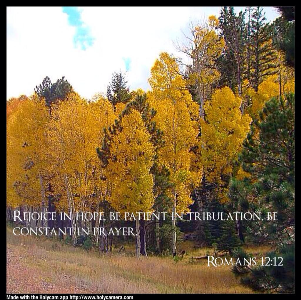 Romans 12:12 Rejoice in Hope, be patient in Tribulation, be constant in #Prayer.