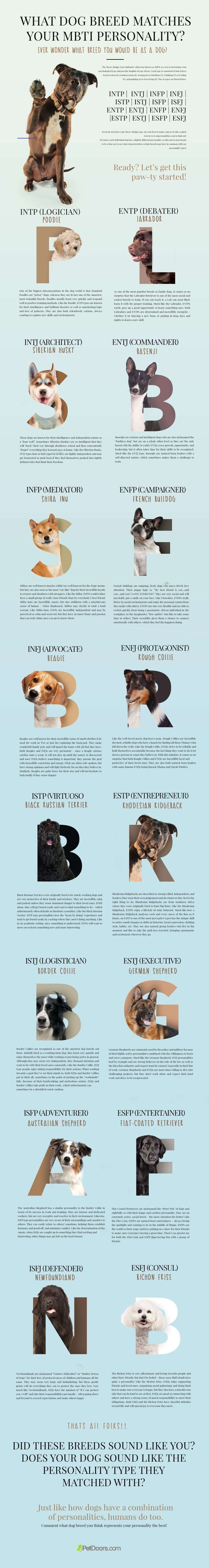 Every dog is unique just as every human is! But the fun lies in discovering the similarities that are there beyond the fur and the species, of course! So our pet-crazy team started a fun project that resulted in this Myers-Briggs Type Indicator for dogs! This infographic is just a fun way to see what characteristics certain breeds may have in common with our personality types! #infographics #pets<br> Wonder how to choose the right dog for you? Check out these dog personalities according to your