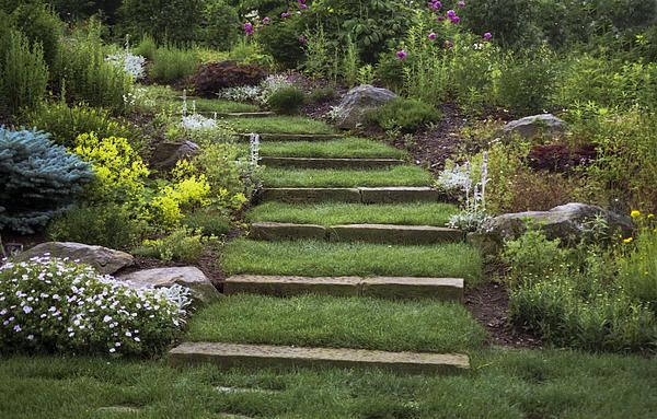 Soft Stairs By Penny Lisowski Steep Hill Landscaping Landscaping With Rocks Fine Art America Photography