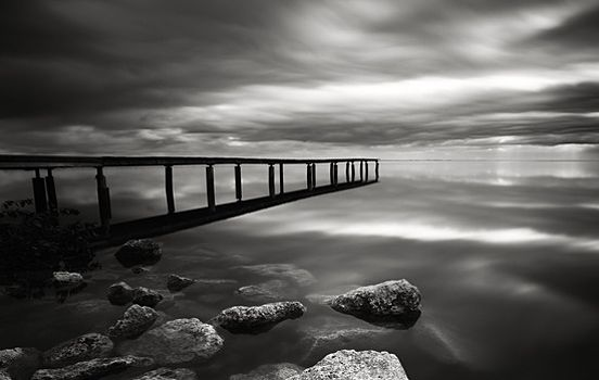 Black and White Photography Nature | Classic+Black+%26+White+Nature+Photography+1.jpg