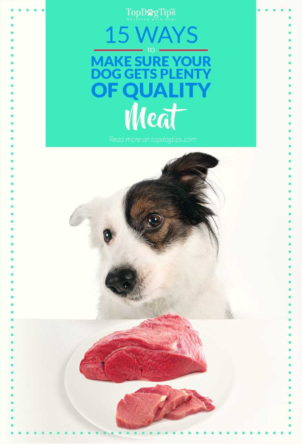15 Ways To Ensure Your Dog Gets Only Good Quality Meat