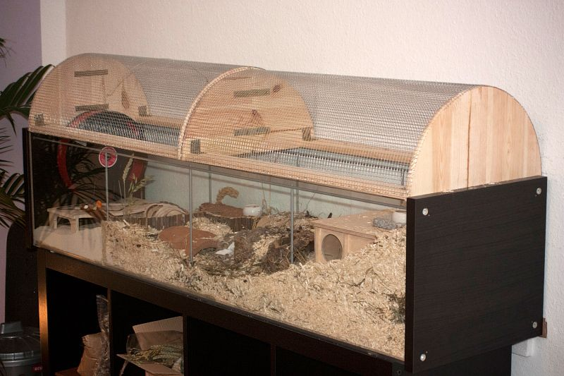 Amazing hamster cage made from a converted ikea detolf and for Ikea hamster cage