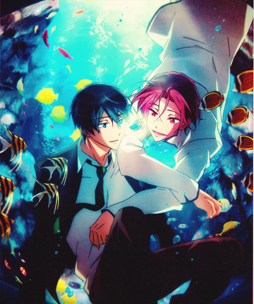 Haru x Rin OFFICIAL art!! (Pretty sure I have this
