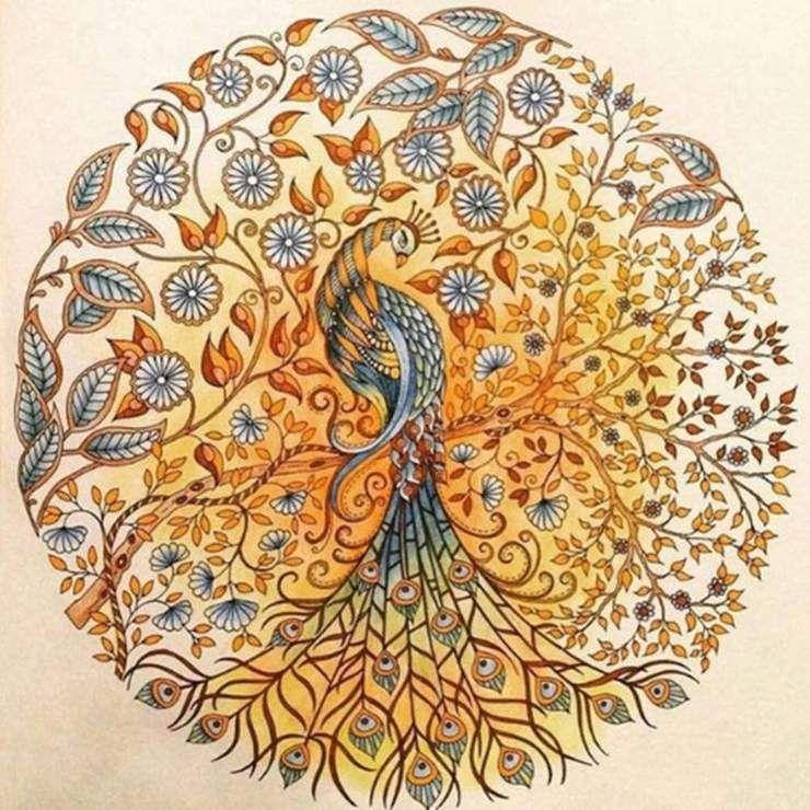 Diamond Painting 5d Full Drill Peacock Secret Garden Coloring Book Johanna Basford Coloring Book Gardens Coloring Book