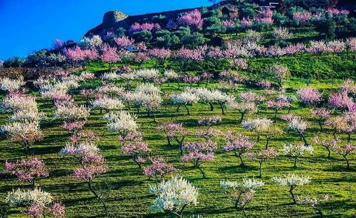 Natureza.  Douro