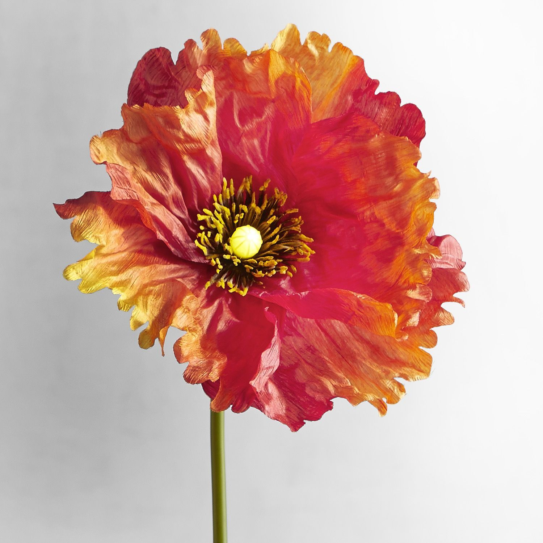 Bright blooms orange faux poppy pre lit stem flowers plants and bright blooms orange faux poppy pre lit stem mightylinksfo