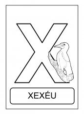 Alfabeto De Animais X Para Colorir Alfabeto Alfabeto Ilustrado