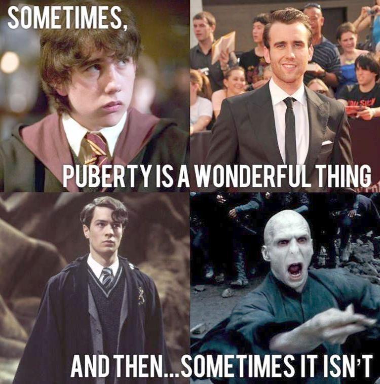 Harry Potter Quiz Alexa Skill The Harry Potter Characters Names Half Harry Potter Cast De Harry Potter Voldemort Harry Potter Memes Hilarious Harry Potter Puns