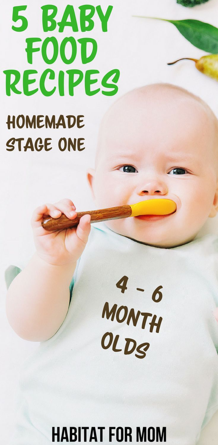 5 Easy Stage 1 Homemade Baby Food Recipes 4 - 6 Months - Habitat For Mom