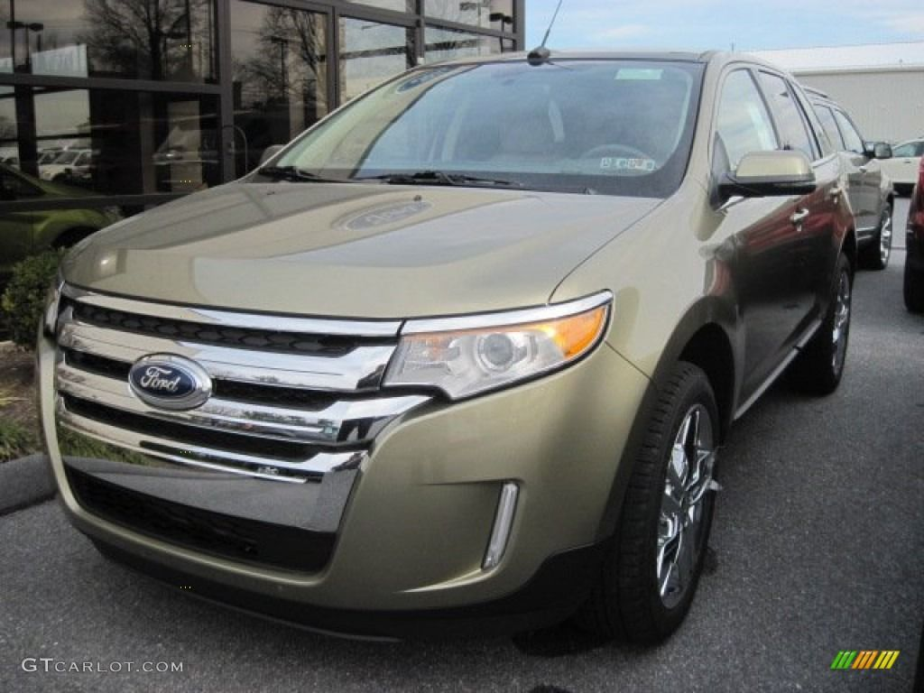 Ford Edge Ginger Ale Metallic With Images Ford Edge Ford Edge
