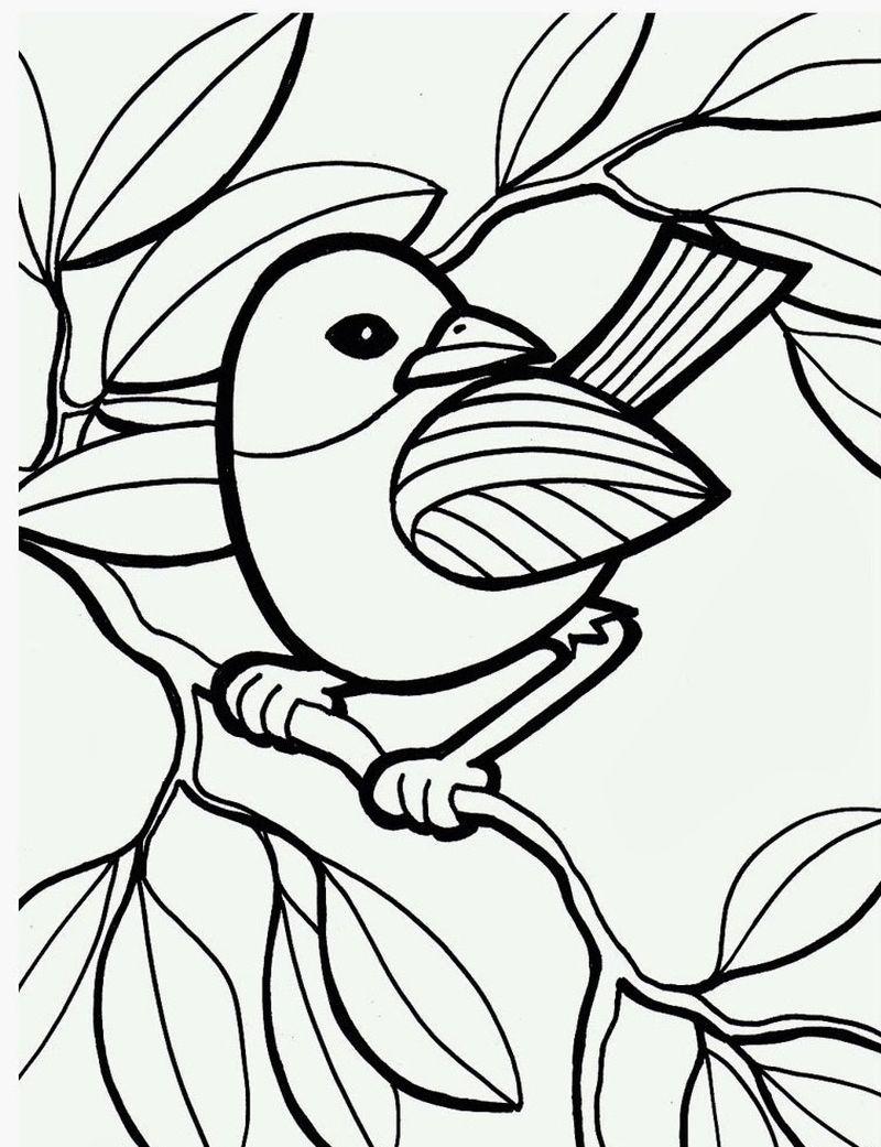 ausmalbilder fliegende vögel  vogel malvorlagen wenn du