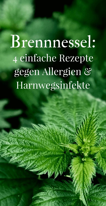 Ortica: 5 semplici ricette per allergie e infezioni del tratto urinario