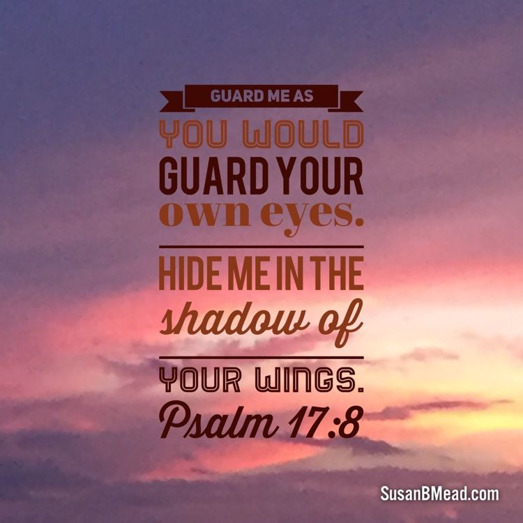 Guard me as you would  guard Your own eyes. Hide me in the  shadow of Your wings.  Psalm 17:8   Thank You, Father God