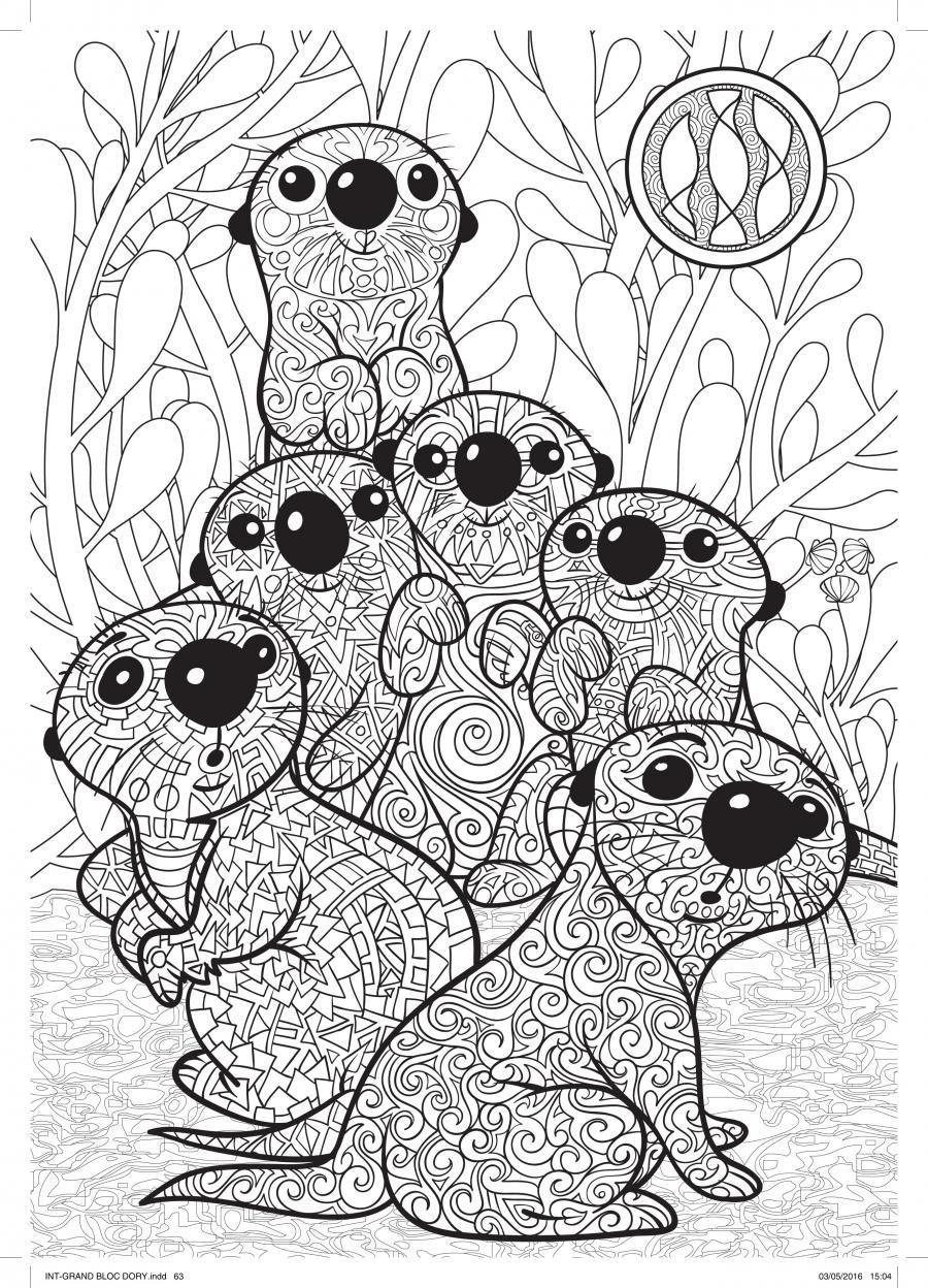 Art-thérapie Le monde de Dory | Hachette Heroes | dibujos ...