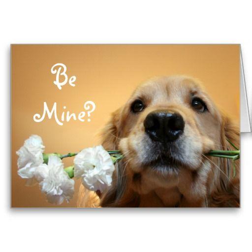 Golden Retriever With Flowers Be Mine Card Golden Retriever