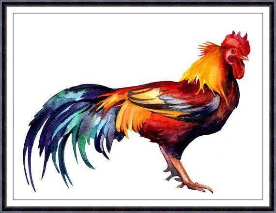 Rooster Art Chicken - Original Watercolor Painting - Art Print of Original Warecolor Painting by Tara Tet
