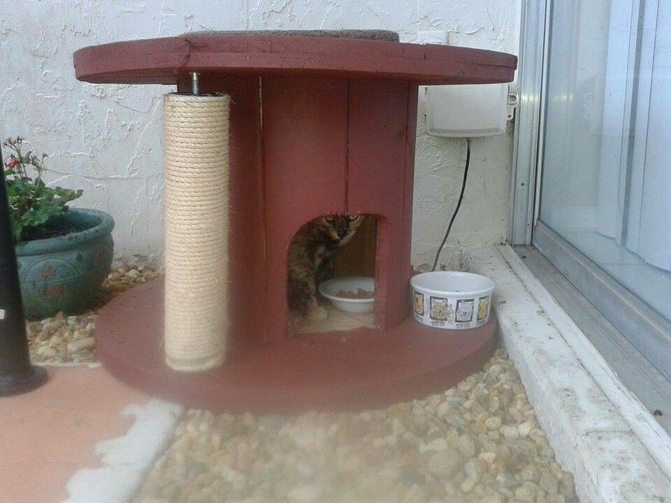 Feral Cat Or Outdoor Cat Shelter Made From Huge Wooden Spool Cat House Diy Outdoor Cat House Outdoor Cat Shelter