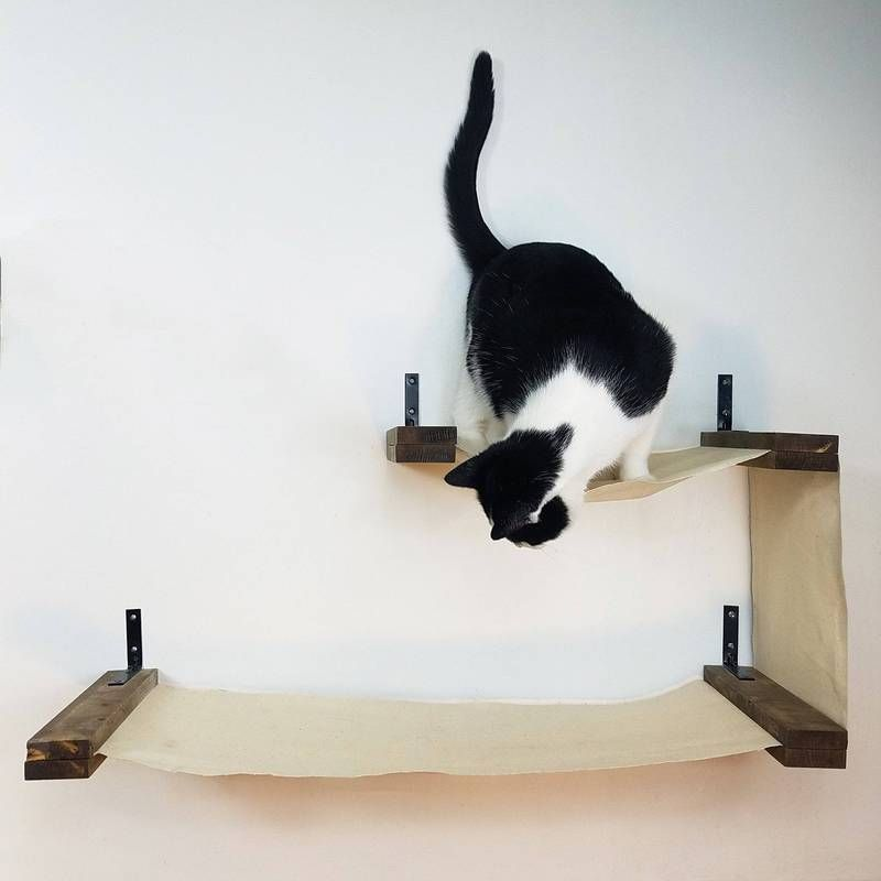 Cat Wall Shelves Furniture For Cats Cat Cave Co In 2020 Cat Wall Cat Wall Furniture Cat Wall Shelves