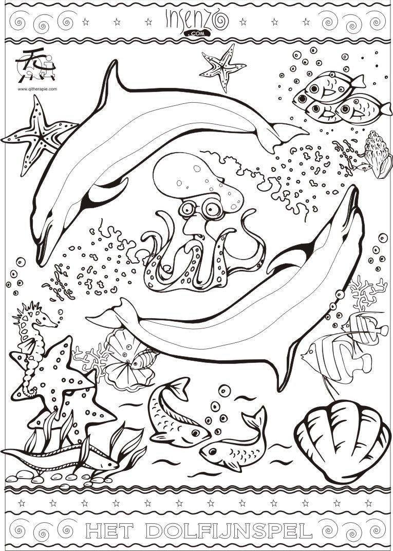 Dolfijnspel Duik In Het Wondere Water En Zie De Magie Onder De Oppervlakte Kleurplaten Creativiteit