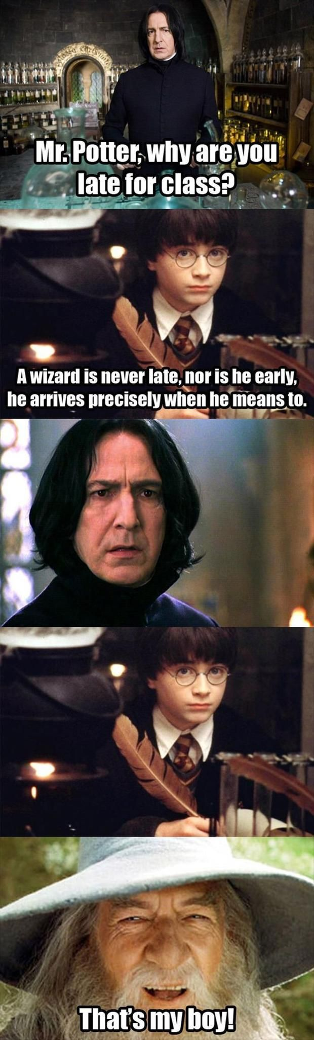 a wizard is never late, nor is he early, funny harry potter