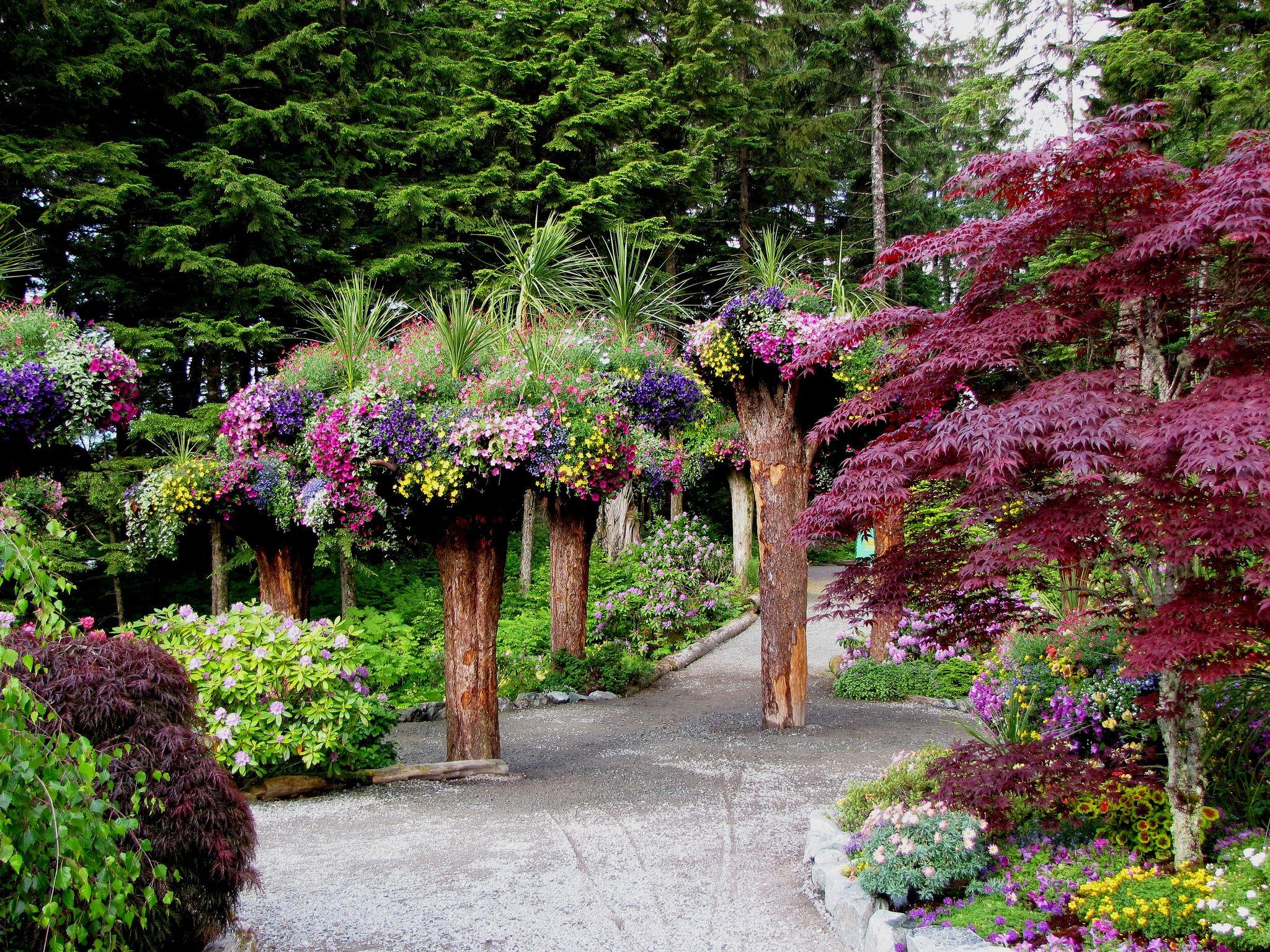 glacier gardens rainforest adventures juneau alaska botanical gardens in juneau alaska - Alaska Botanical Garden