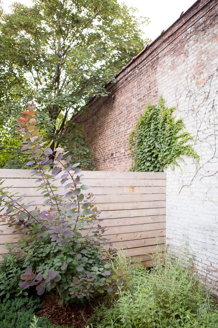 Great Garden Designer Visit: A Low Maintenance Brooklyn Backyard By New Eco  Landscapes
