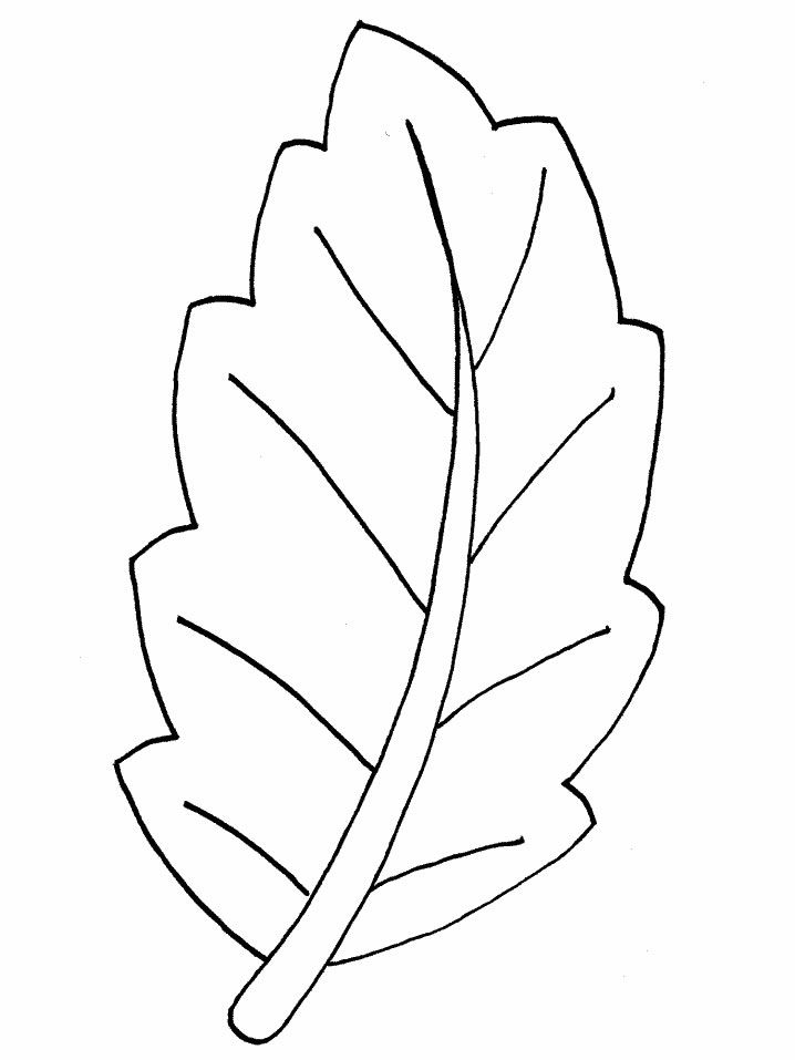 Dibujos para colorear de Hojas de los árboles, Plantillas para colorear de Hojas…