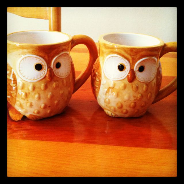 Adorable ceramic owl mugs my boyfriend bought me for the kitchen.