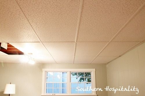 Replacing Drop Ceiling Tiles Bat Dropped