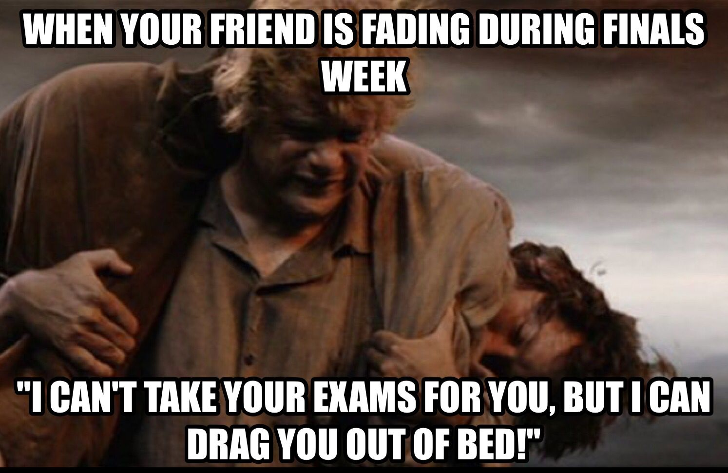 Seriously Though How Many People Felt Like They Were Either The Friend Being Dragged Or The Friend Doing The Dra Funny School Memes Finals Memes School Memes