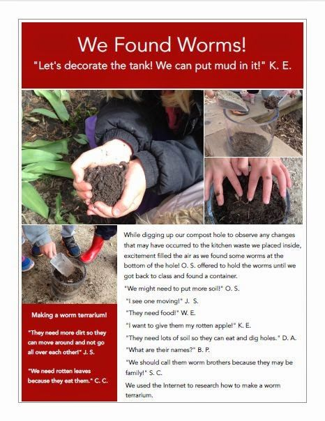 Kinder Garden: Wonders In Kindergarten: Worm Inquiry
