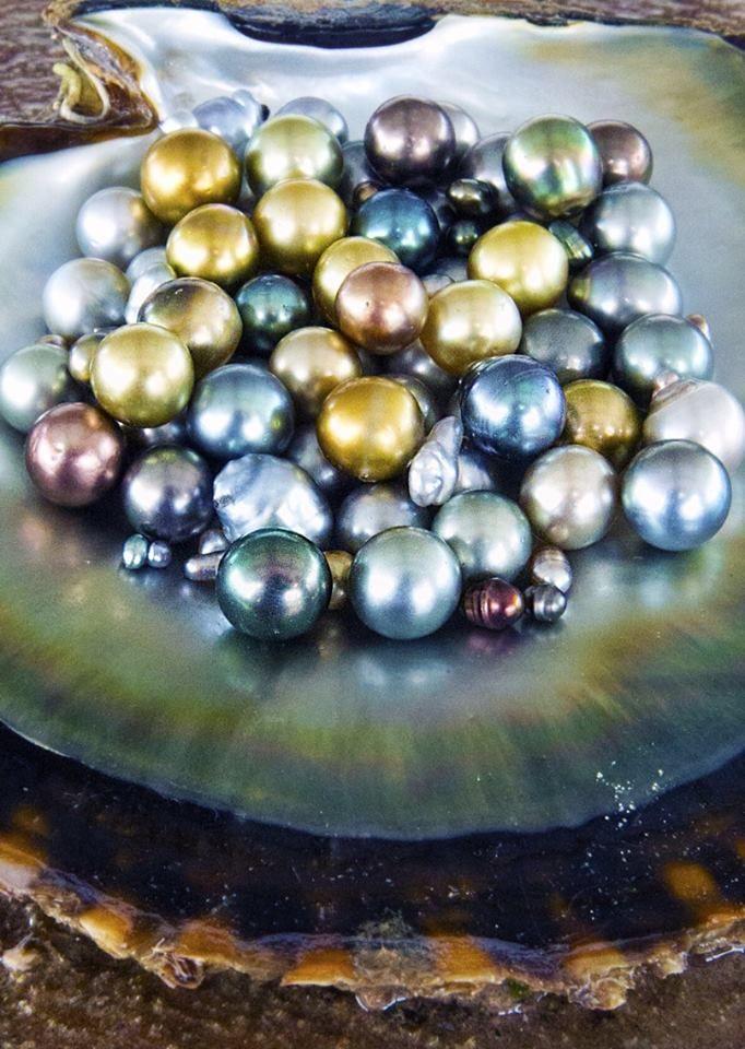 pearls on pinterest - photo #35